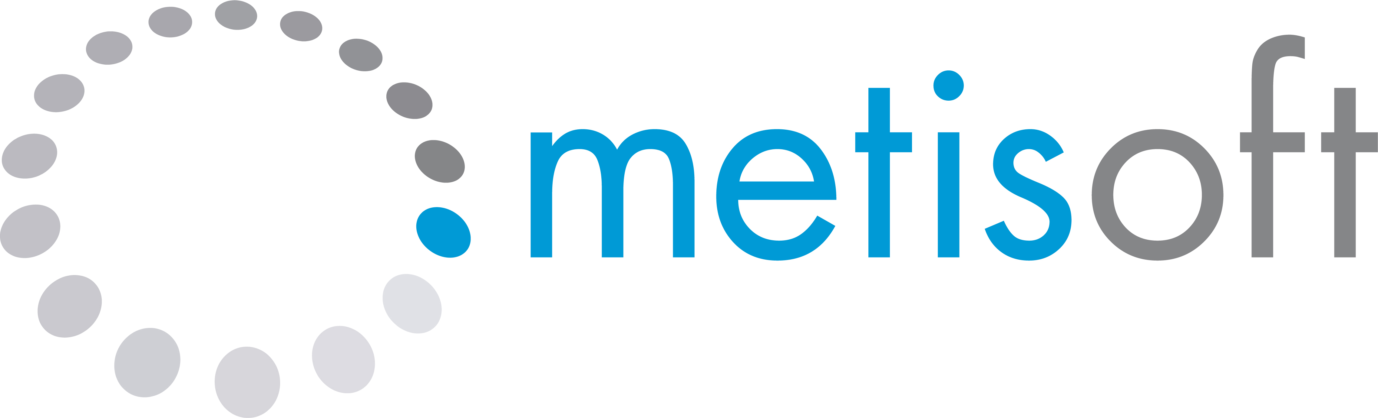 Metisoft Spa